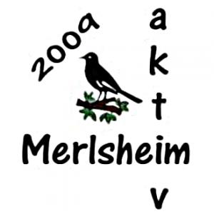 Merlsheim Aktiv